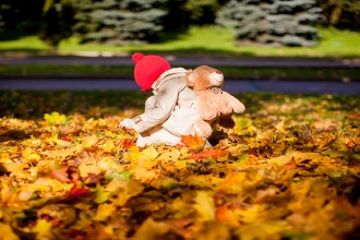Little adorable girl with a backpack-bear walks in the autumn forest on beautiful sunny day